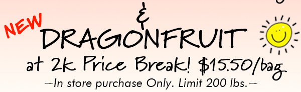 Also on sale Dragonfruit cone 5